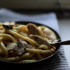 Creamy macaronis with turkey, oyster mushrooms & thyme