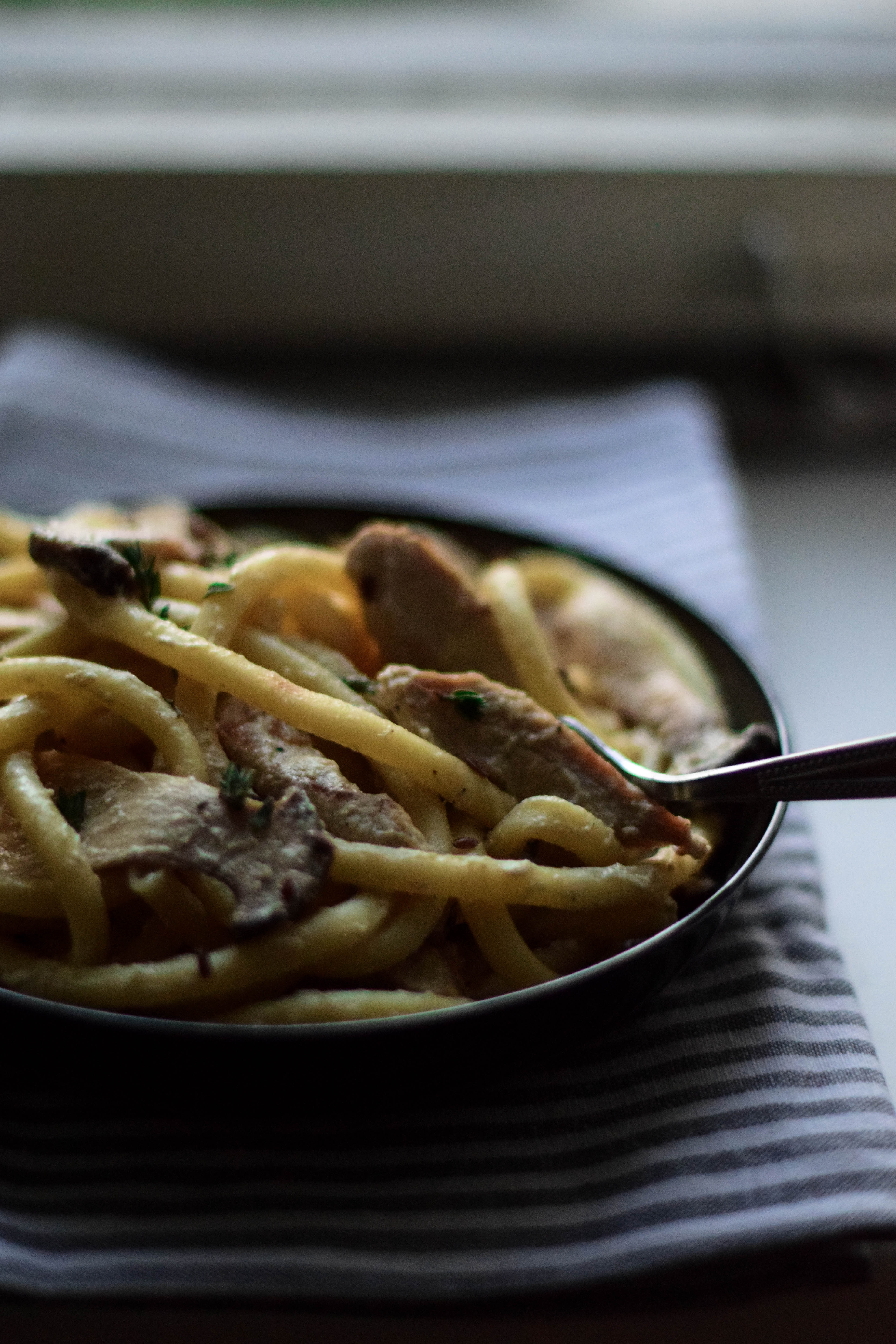 Creamy macaronis with oyster mushrooms, turkey & thyme
