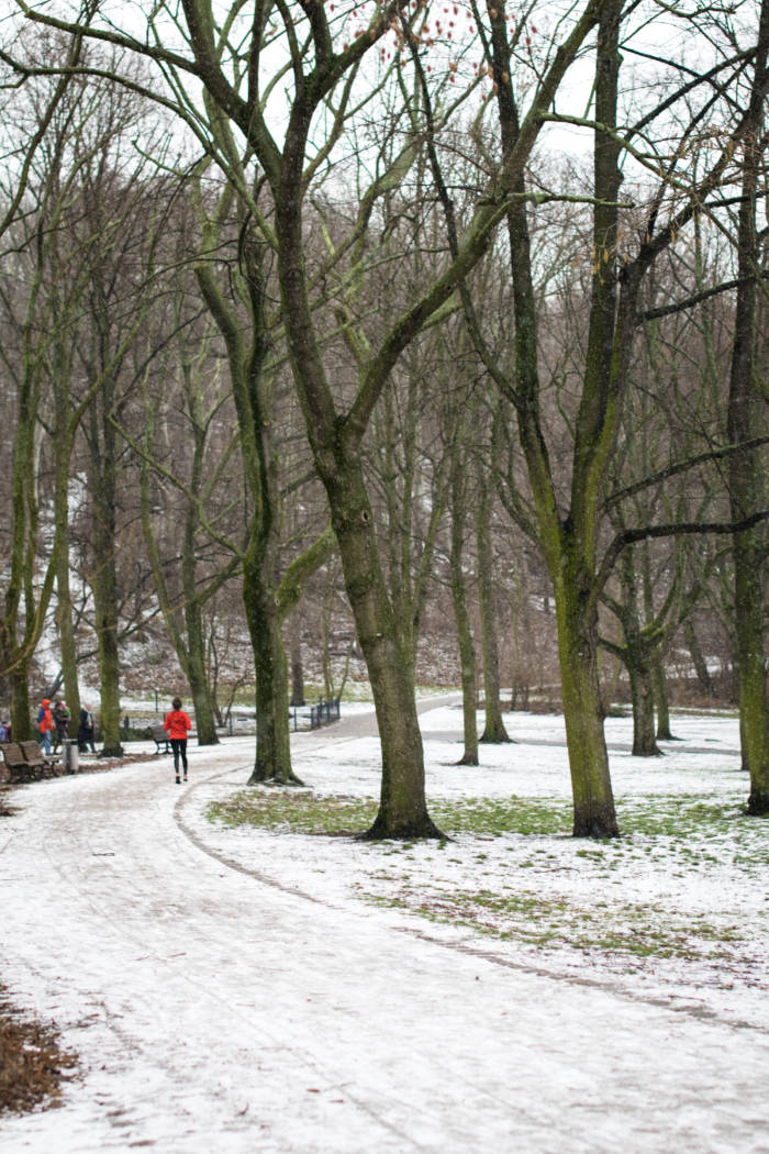 Training: my running routine